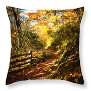 The Lighted Path Throw Pillow