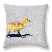 A Walk On Asphalt  Throw Pillow