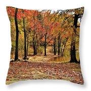 A Walk Through Autumn  Throw Pillow