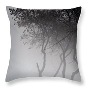 A Walk Through The Mist Throw Pillow