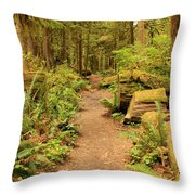 A Walk Through The Rainforest Throw Pillow