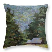 A Walk To Great Meadow Throw Pillow