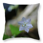 A Washed Flower Throw Pillow