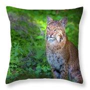 A Watchful Eye Throw Pillow