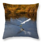 A Water Ballet Throw Pillow