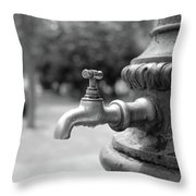 A Water Tap In The Park Throw Pillow