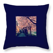 A Way Under The Cherry Blossom Throw Pillow