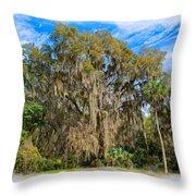 A Well Dressed Oak Throw Pillow