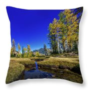 A Western Autumn Throw Pillow