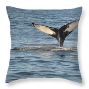 A Whale Of A Tail Bar Harbor Throw Pillow