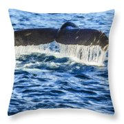 A Whale Of A Tail Throw Pillow