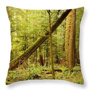 A Whisper In The Rainforest Throw Pillow