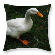 A White Duck Throw Pillow
