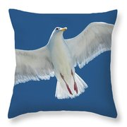 A White Gull Flying In Sky Throw Pillow