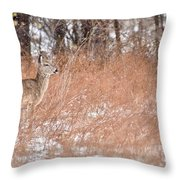 A White-tailed Deer In A Snow Storm Throw Pillow