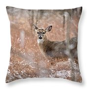 A White-tailed Deer In The Snow Throw Pillow
