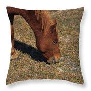 A Wild Pony In Assateague Throw Pillow