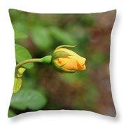 A Wilder Rose Throw Pillow