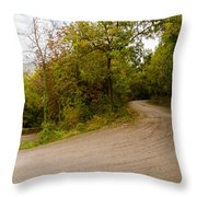 A Winding Road 2  Throw Pillow
