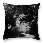 A Winding Road Bw Throw Pillow