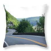 A Winding Road Throw Pillow