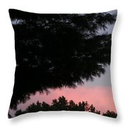 A Wing And A Glare Throw Pillow