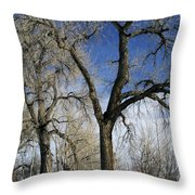 A Winter Kiss Throw Pillow