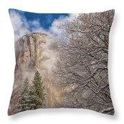 A Winter Scene  Throw Pillow