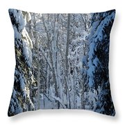 A Winter View  Throw Pillow