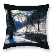 A Winter Walk In The Black Forest Throw Pillow