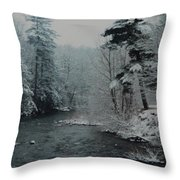 A Winter Waterland Throw Pillow