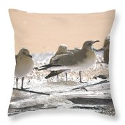 A Winter's Day Passing Bye Throw Pillow