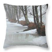 A Winter's Scene Throw Pillow