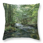 A Woodland View With A Rushing Brook Throw Pillow
