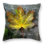 A Work Of Nature's Art Throw Pillow