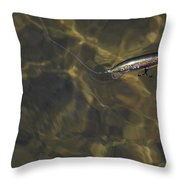 A Working Lure Throw Pillow