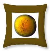 A World All Its Own Throw Pillow
