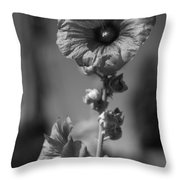 A World With No Color Differentiation Throw Pillow