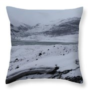 A World Without Colour Throw Pillow