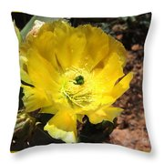 A Yellow Cactus Blossom Throw Pillow