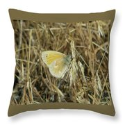 A Yellow Moth  Throw Pillow