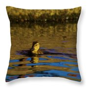 A Young Duckling Throw Pillow