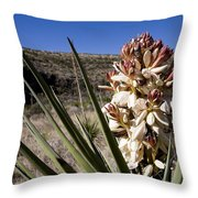 A Yucca Plant Blossoms In The Desert Throw Pillow