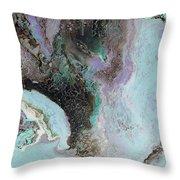 Abalone Throw Pillow