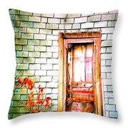 Abandonded Farm Door Throw Pillow