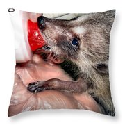 Abandoned And Raised Throw Pillow