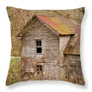 Abandoned Farmhouse In Kentucky Throw Pillow