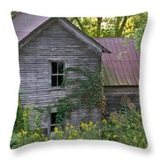 Abandoned Farmhouse On Stacy Fork Throw Pillow