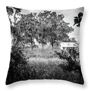 Abandoned Farmhouse Throw Pillow