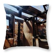Abandoned House 1 Throw Pillow